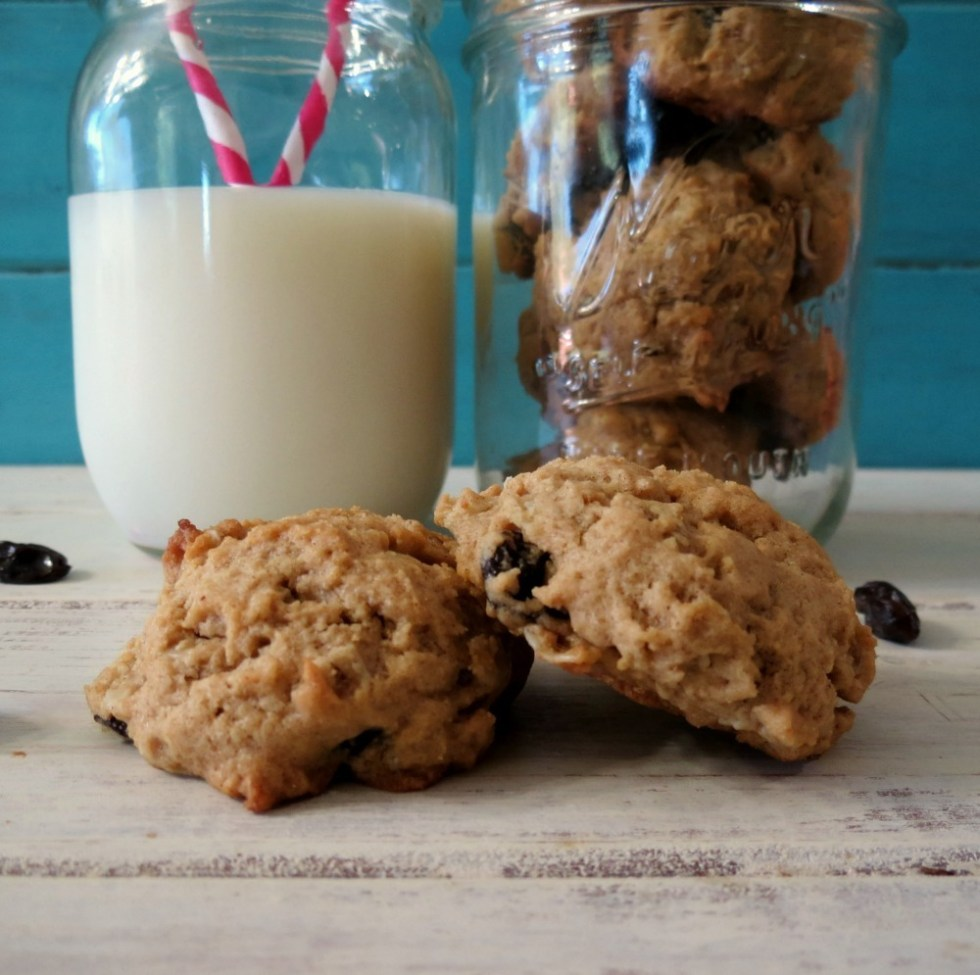 Peanut-Butter-Oatmeal-Raisin-Cookies-a-028a