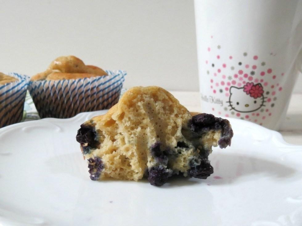 Vanilla Protein Blueberry Muffins