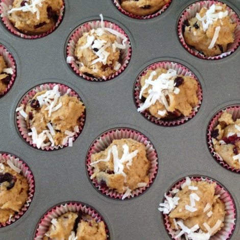 Cranberry Coconut Mini Scuffins