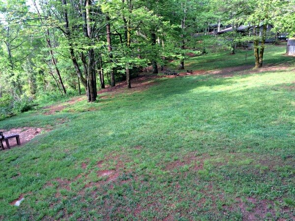 cabin backyard