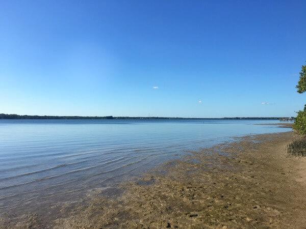 Oldsmar Florida Bayfront