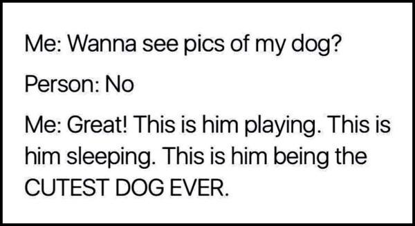 Dog momma.