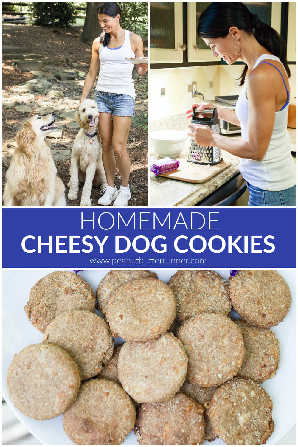 homemade cheesy dog cookies