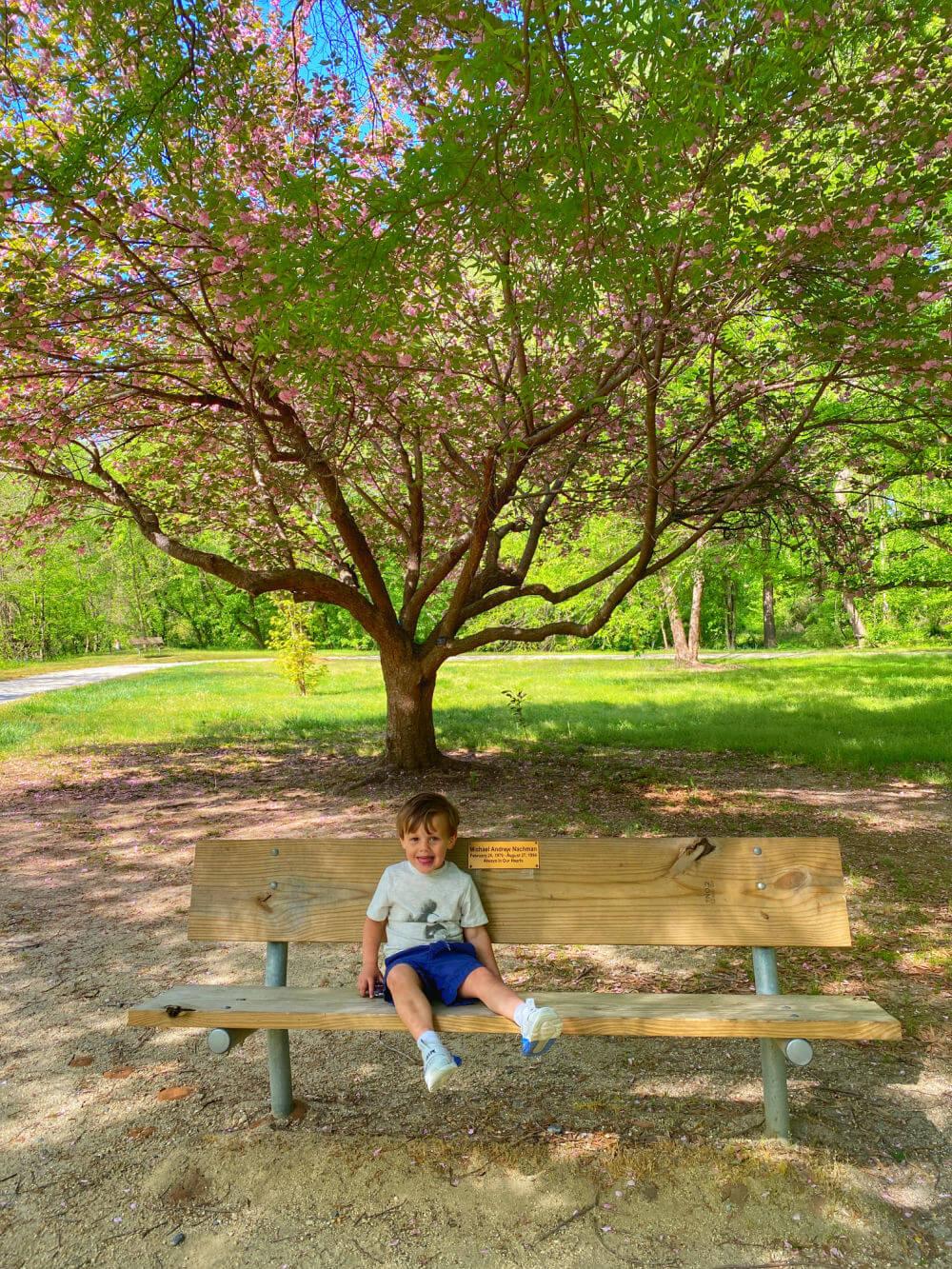 Winston-Salem park