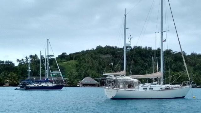 Blue-Pelican-and-Dea-Latis-Bora-Bora-2019