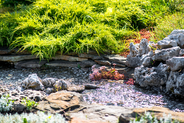 Picture of a landscape design in Franklin, TN. Stream running through rocks.