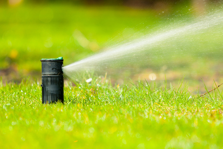Picture of Automatic garden irrigation sprinkler system, watering lawn