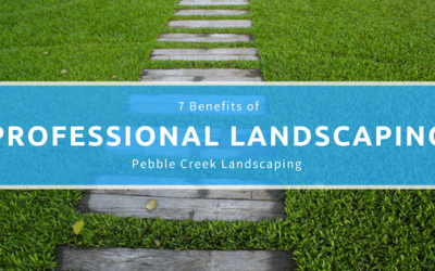 7 Benefits of Professional Landscaping
