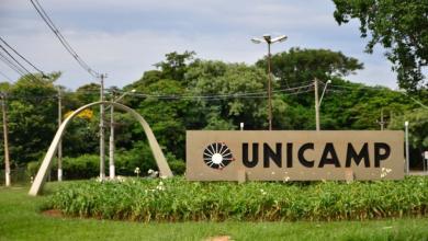 Foto de Confira 3 Programas de Pós-Graduação da UNICAMP com inscrições abertas