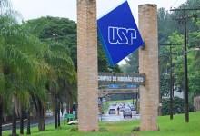 Foto de USP abre curso EAD na área de matemática para anos iniciais – 2021