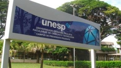 Foto de UNESP publica 139 editais para Professor Substituto em diversas áreas em 2021