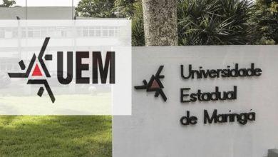 Foto de UEM recebe inscrições em Processo Seletivo para Professores