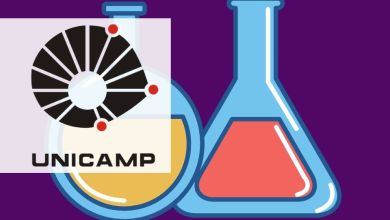 Foto de UNICAMP anuncia seleção para Mestrado e Doutorado em Química