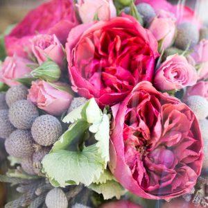 Flor Preservada