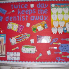 Teeth Names Diagram 2004 Ford F150 Car Stereo Wiring Pec: Bulletin Boards For Physical Education