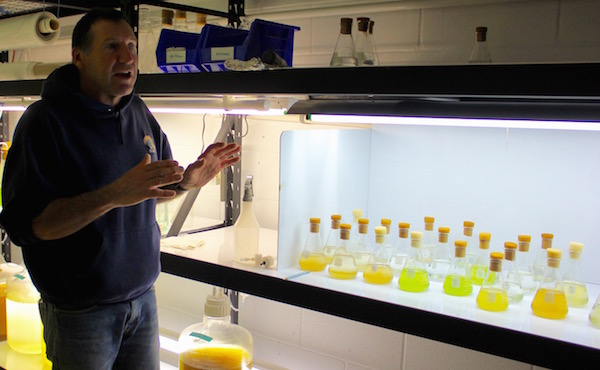Kim Tetrault in the algae room at the Cornell Cooperative Extension Marine Science Education Center