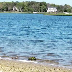 May 25, 8:30 a.m. Reeves Bay, Flanders