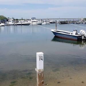 May 18, 2:02 p.m., Sag Harbor Cove