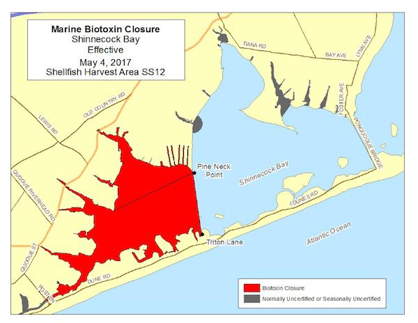The Shinnecock Bay emergency closure.