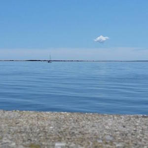 July 31, 12:30 p.m. Hallock Bay from the Orient Causeway.