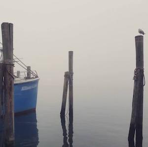 Sept. 27, 9:40 a.m. Montauk Commercial Dock
