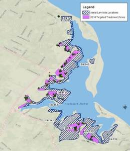 Instead of treating the entire spray blocks (crosshatched areas numbered on the map), only the hotspots with the mosquito larvae identified by weekly surveillance were treated resulting in much smaller treatment footprint (violet colored blocks) on the marsh. The 2018 aerial applications were targeted toward areas with heavy mosquito breeding.
