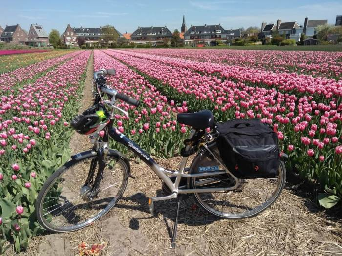 Dónde alquilar una bicicleta en Keukenhof