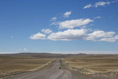 Ruta 40, Tapi-Aike a Cerrito, desta vez com o vento ajudando, por favor!