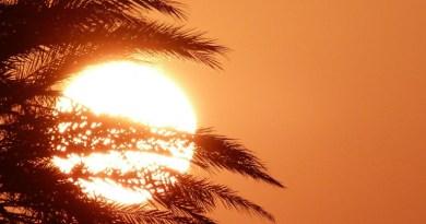 El calor y sus peligros