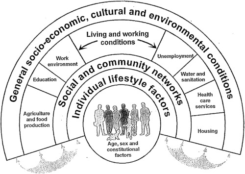 Intersecting Health Policy and the Social Determinants of