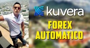 kuvera forex automatico