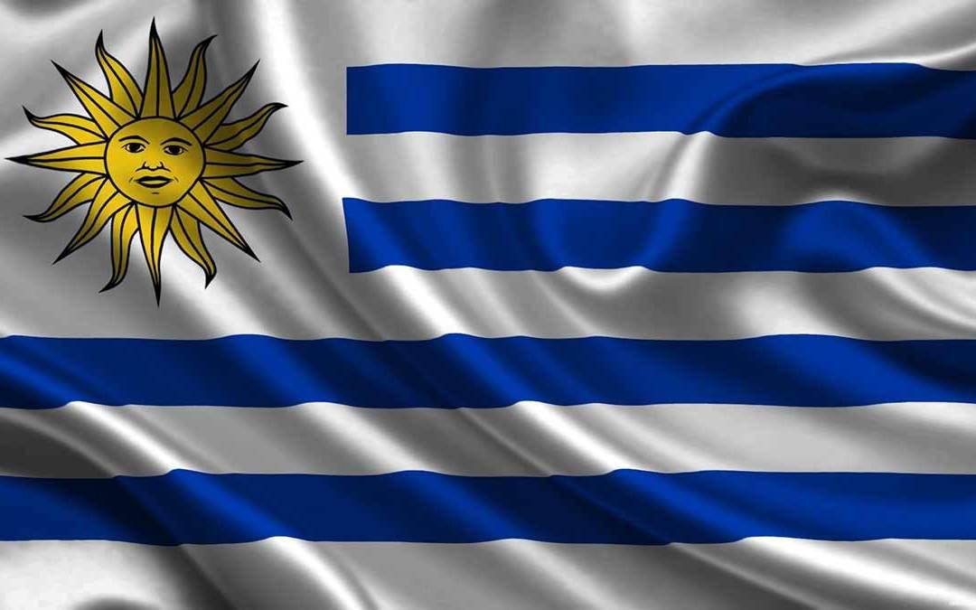 ¡ARRIBA LA CELESTE! ¡Vamos Uruguay Noma!