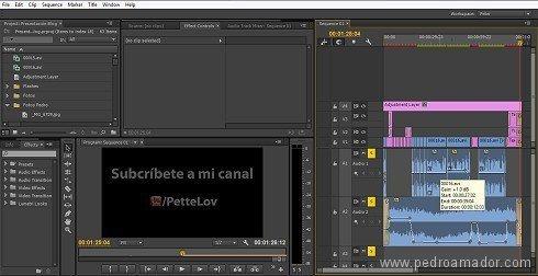 como editar video profesional