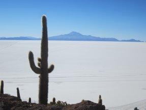 BOLIVIA Salar de Uyuni (3)