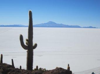 BOLIVIA Salar de Uyuni 3 - Qué hacer en BOLIVIA⛲