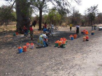 TANZANIA-Carretera tomates