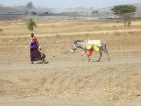 Qué conocer en Tanzania