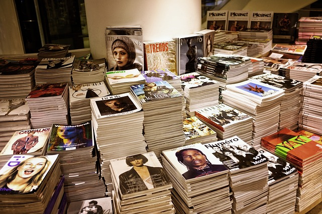 periodicos o revistas