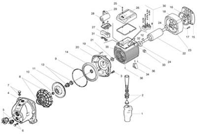 Pedrollo Pressure Pump Installation, Pedrollo, Free Engine