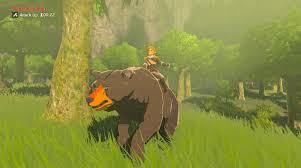 Breath of the wild oso