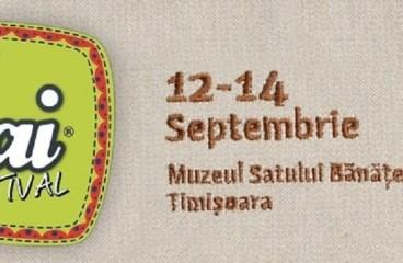 Festivalul PLAI la Timisoara