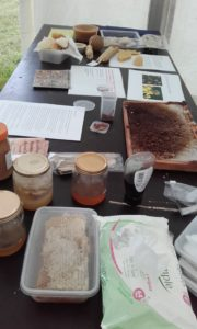 Honey tasting and other products of the hive