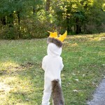 Max King of the Wild Things Costume