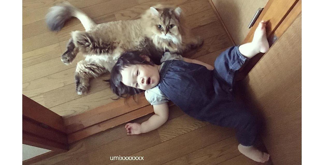 愛你就是要躺一起!貓哥哥與人類妹妹的相親相愛萌特輯 - JUSTYOU