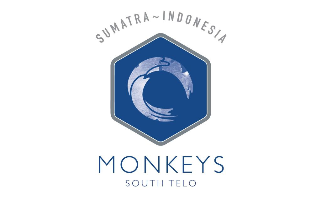 sitelogos_monkeys