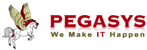 Pegasys Information Technologies Pvt Ltd