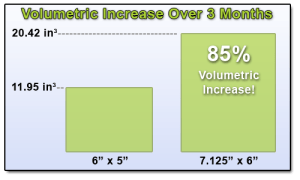 Penis Size Volume Increase