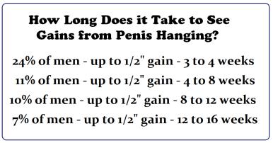 penis hangers weights gains