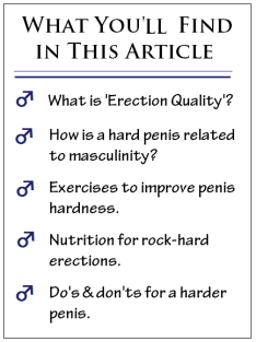 harder penis article