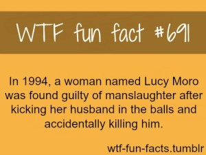 woman kicked husband's balls accidentally killed him - WTF Fun Facts Penis Edition